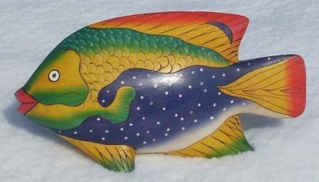 Fisch 30 3