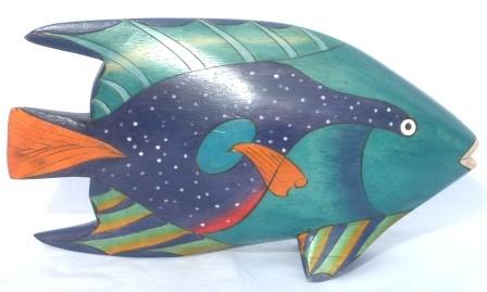 Fisch 30 1
