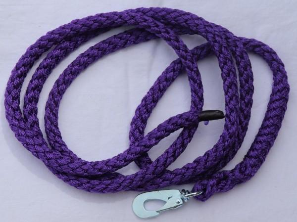 Leine violett