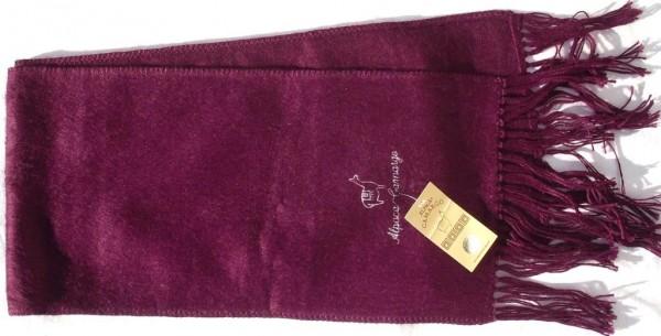 6306 Camargo violett